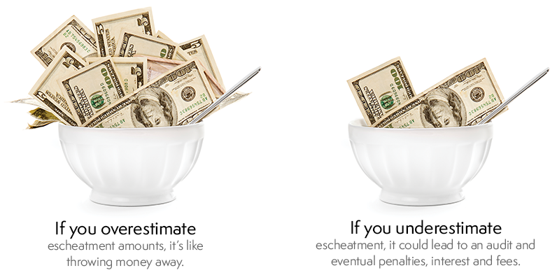 two-money-bowls.png